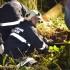 Herbstübung: Forstunfall in Kirchbach